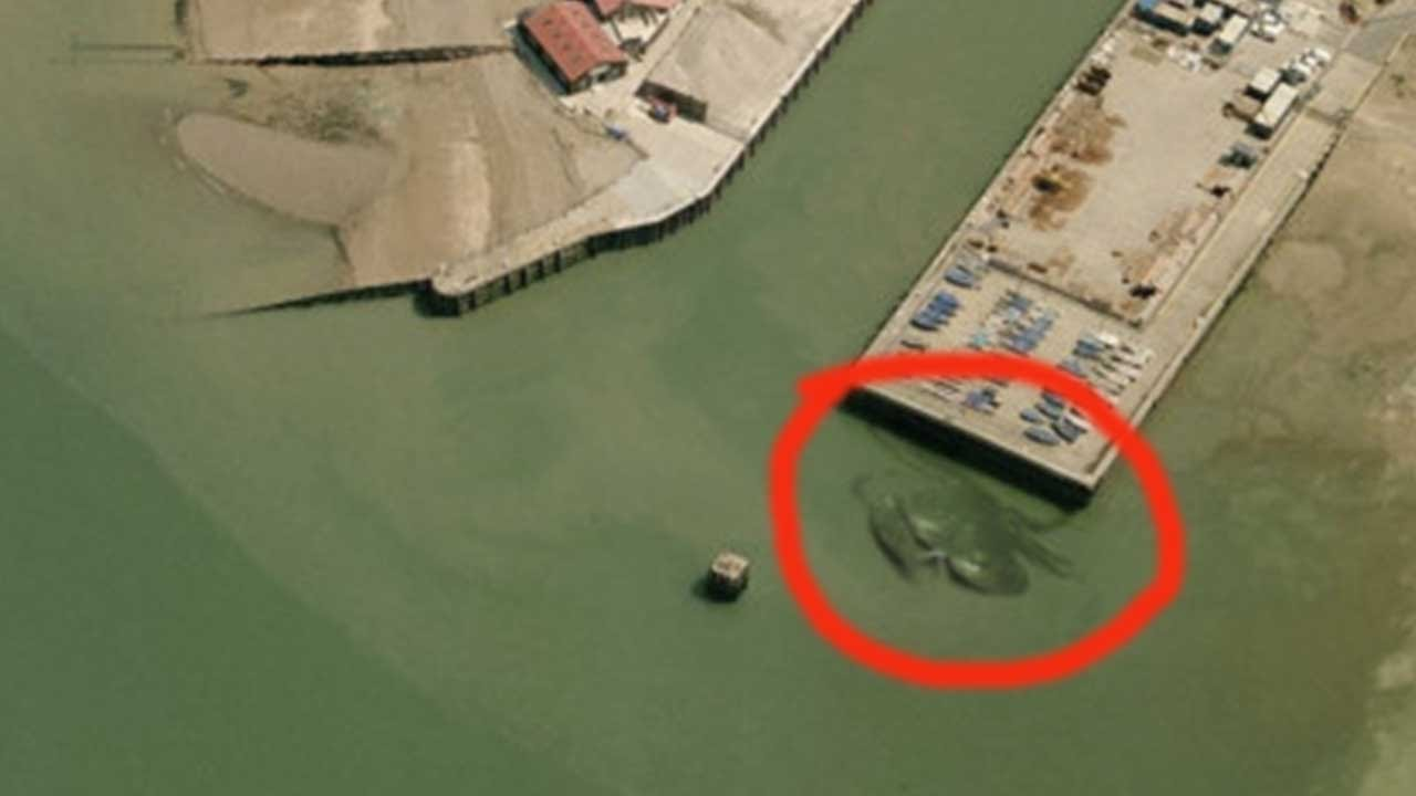 giant crab spotted in aerial photo u2013 crabzilla youtube