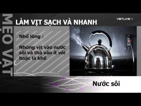 Cach Lam Thit Vit Nhanh Va Sach