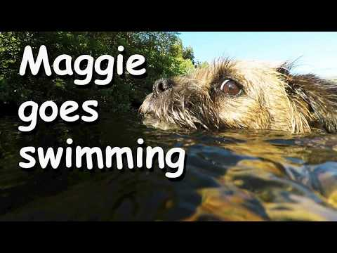 Maggie goes swimming