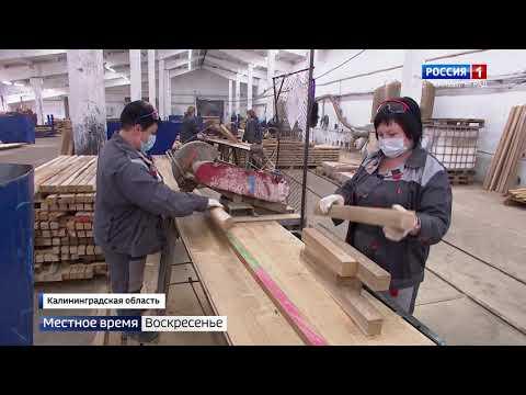 Новые рабочие места и экономические перспективы: импульс развития востока Калининградской области