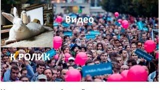 Петиция о допуске Навального к выборам Президента РФ