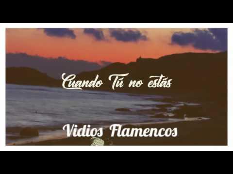 Vidios Flamencos