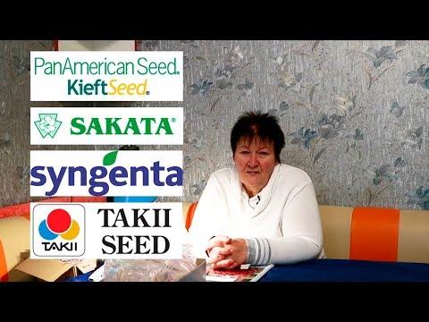 Где купить семена петуний в Украине?🌺🌱