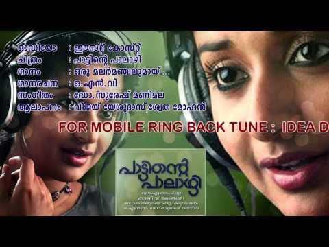 Pattinte Palazhi | Oru Malarmanjalumay | Vijay Yesudas, Swetha Mohan