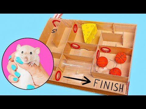 Cum să construiești un labirint creativ pentru șobolani