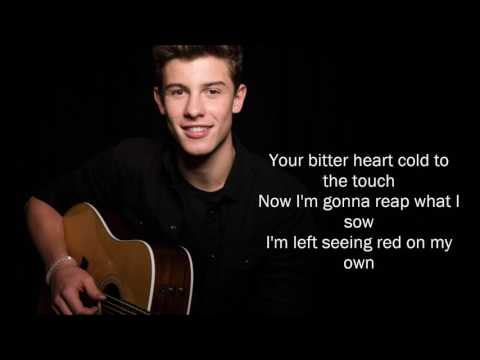 shawn Mendes - stitches (Official Video lyrics)