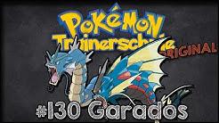 DIE TRAINERSCHULE (#28) Pokémonkunde: Garados