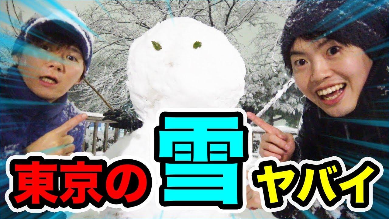 【急上昇】東京の雪がヤバすぎるから雪だるまでも作っちゃおう!【天気】【MasuoTV】