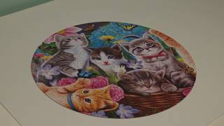 Cute Kittens Round Jigsaw Puzzle (350 Piece Time Lapse)