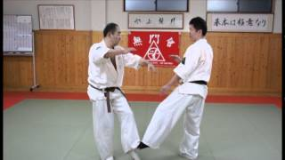 Repeat youtube video MUMONKAI KARATE FUKUOKA 「猫足組手 攻撃 vs 受け」