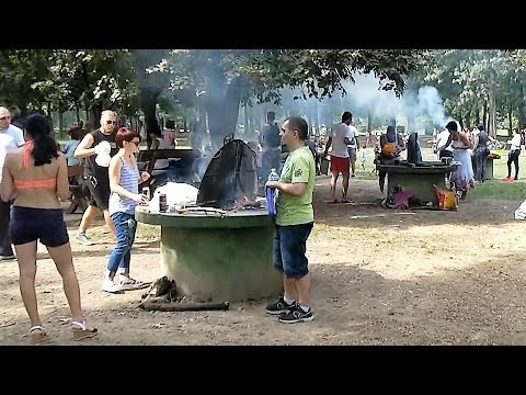 Barbecue at Ada Ciganlija, Belgrade
