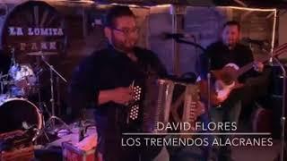Los Tremendos Alacranes - La Revancha & La Grulla polka with David Flores