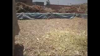 Maize Chopper Machine Made in Pakistan 23 June 2009 Lahore Pakistan