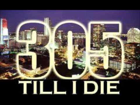 305 Anthem  Pitbull