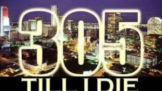 305 Anthem - Pitbull