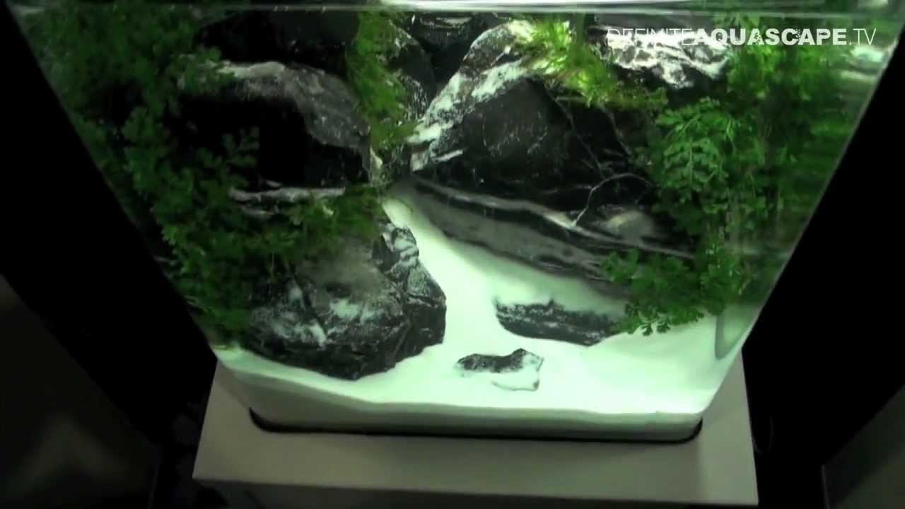 Aquascaping - The Art of the Planted Aquarium 2013 Nano pt.6 - YouTube