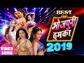 भोजपुरी आइटम सॉंग    Bhojpuri Item Songs    Video Jukebox    Bhojpuri Hit Item Songs 2019