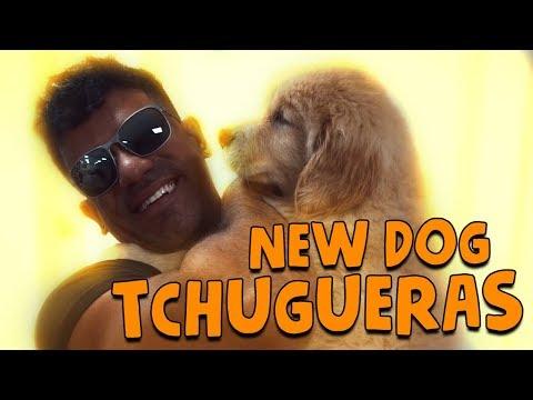 NEW DOG TCHUGUERAS  VLOG 075