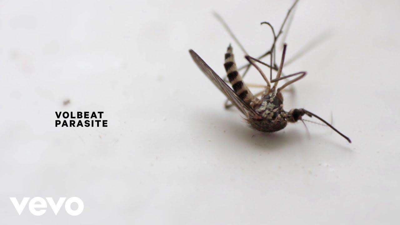 Volbeat - Parasite (Lyric Video)