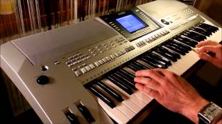 Tiamat - Misantropolis - Live Instrumental Synth Version by Piotr Zylbert (HD)