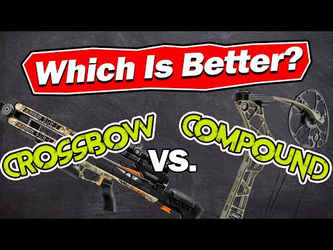 Crossbow vs Compound Bow – Which is Better?