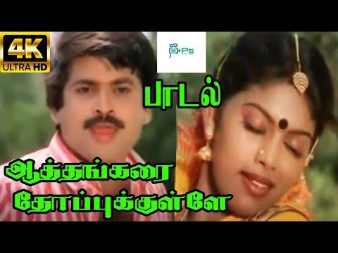 ஆத்தங்கரை தோப்புக்குள்ளே ||Aathangarai Thoppukkulle ||Pandiyan,Madhuri Love Duet Tamil H D Song