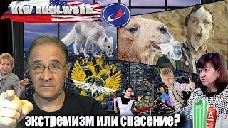 Забирать деньги из российских банков: экстремизм или спасение? | Новости 7:40, 04.12.2018