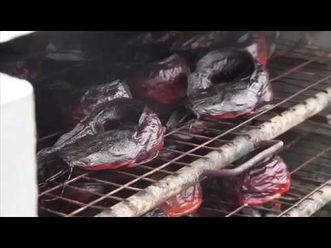 NIGERIA: THE DRIED FISH TECHNOLOGY