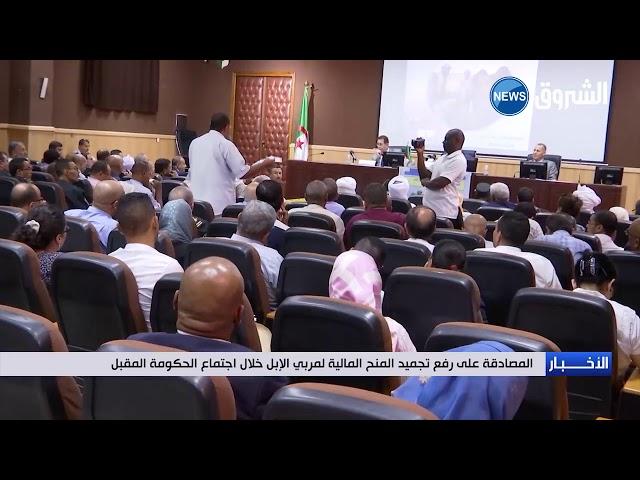 الجزائر..المصادقة على رفع التجميد عن المنح المالية لمربي الإبل خلال اجتماع الحكومة.