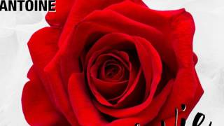 Скачать DJ Antoine La Vie En Rose DJ Antoine Vs Mad Mark 2k17 Mix Official Audio