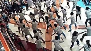 Flash mob at R City mall mumbai..(dish sawaar hai) HD
