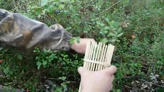 DIY-Стакан-комбайн для сбора ягод своими руками / Glassful -harvester for picking berries