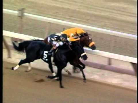 Lure & Devil His Due: Gotham S. - Aqueduct Racetrack 04/04/1992