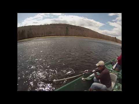 Upper Delaware River 5/2/15