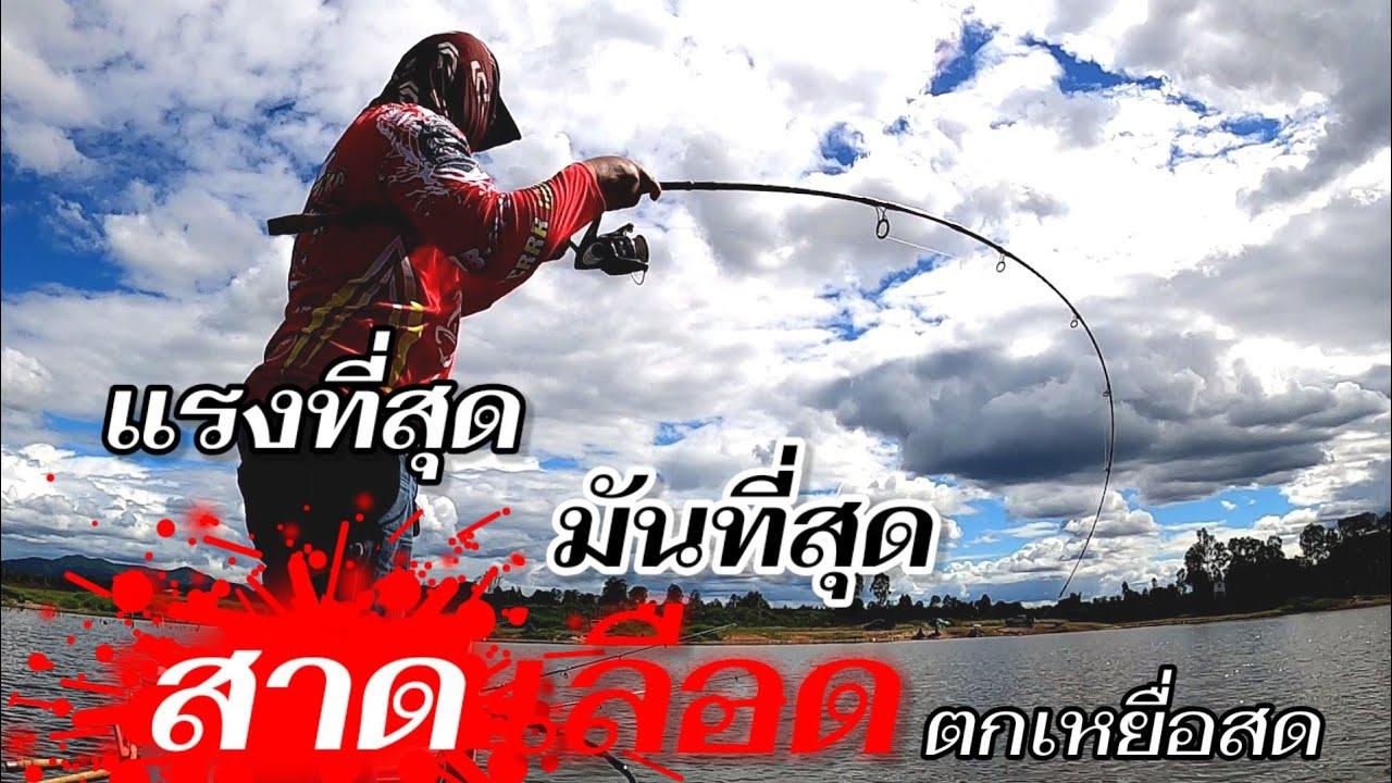 สาดเลือด ตกเหยื่อสด กินสนั่น มันที่สุด HD ⛵ EP188/AB-fishing Channel