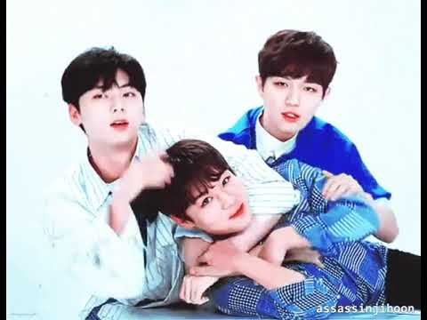 Hwangwink / Emperorwink ( Hwang Minhyun X Park Jihoon ) Moments