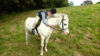 My horse riding story 12 years