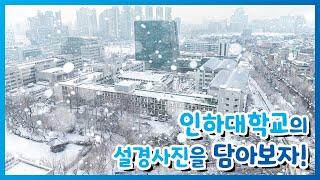인하대학교 캠퍼스 설경사진을 담아보자! | 인하대 겨울…