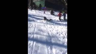 Toddler Sled - Toddler sled fun