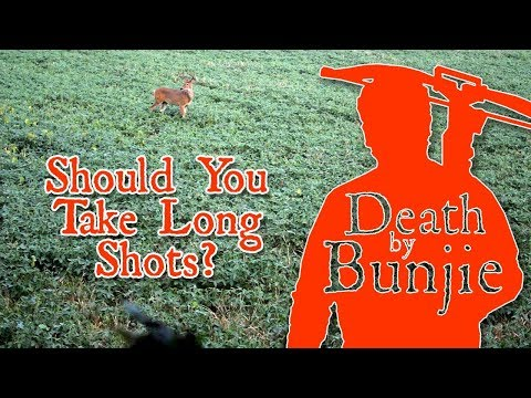 Should You Take LONG SHOTS With Your CROSSBOW?