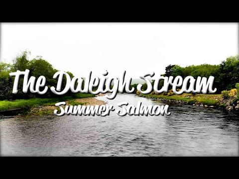 Daleigh Stream - Tulchan C Beat  - River Spey Scotland Atlantic Salmon