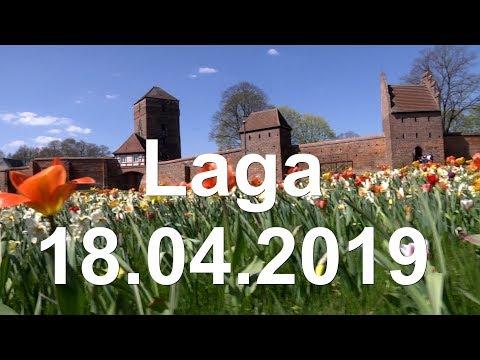 Laga 2019 -