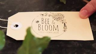 Bee & Bloom // Promo // 2019
