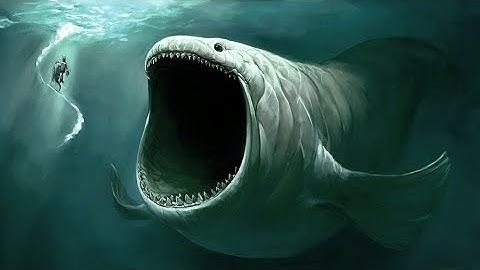 los 5 monstruos marinos ms grandes del mundo