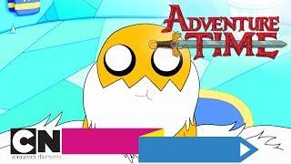 Pora na przygodę!   Wierność królowi (cały odcinek)   Cartoon Network