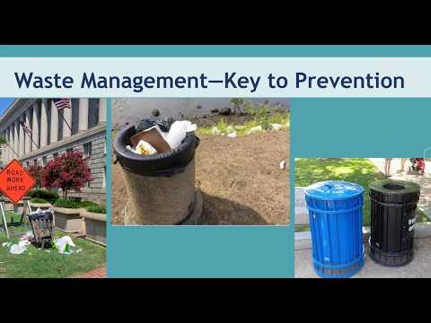 Marine Debris: Plastics Producers Solutions