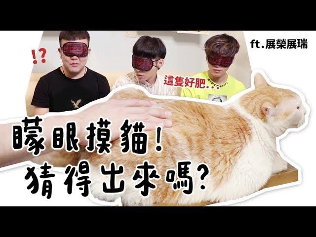【黃阿瑪的後宮生活】矇眼摸貓!猜得出來嗎?ft.展榮展瑞