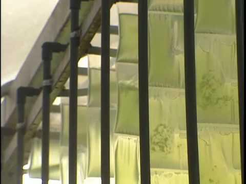 High Density Vertical BioReactor