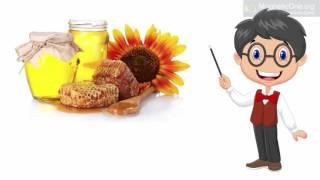 Урок 60 Природознавство 1 клас. Звідки береться олія?