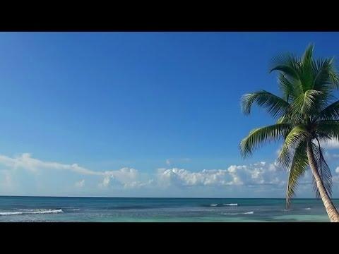 . ABOVE AND BEYOND & KYAU AND ALBERT - ANPHONIC. Слушать песню Above and Beyond vs Kyau And Albert - Anphonic (Makes Your Heart Beat) (Arty remix)